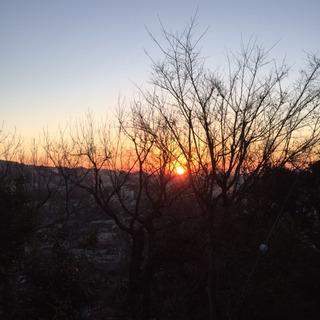 ブログ写真 H29.1月.JPG